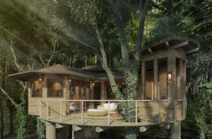 Treehouse Render Ext